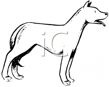 Royalty Free Clipart Image of a Standing Dog