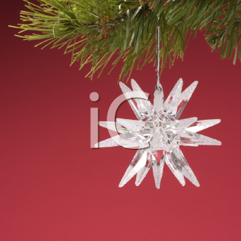 Royalty Free Photo of a Star-Shaped Christmas Ornament Hanging From a Pine Branch