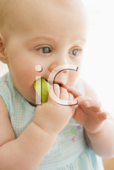 Royalty Free Photo of a Baby Eating an Apple