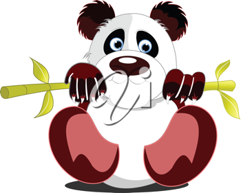 Little sitting panda. Vector illustration
