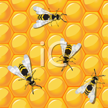 Bees and honeycomb, seamless background design. Ready for print design, no meshes or transparencies used.