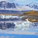 Ocean ice lagoon Jökulsárlón. In Iceland early July morning. Icebergs and ice floes are reflected in smooth water