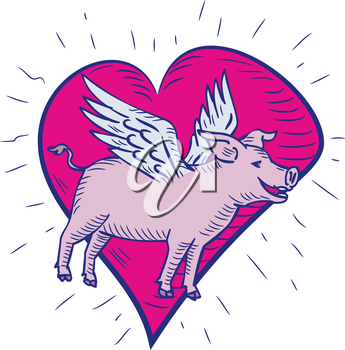 Doodle art illustration of a pig, hog or boar with wing flying side view set inside pink heart done in drawing sketch style on isolated white background in color.
