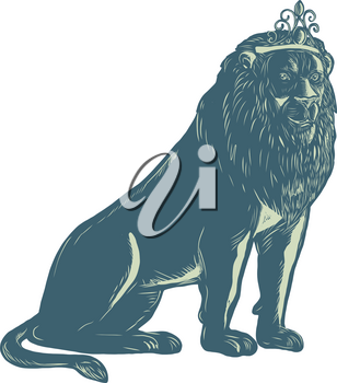 Scratchboard style illustration of a lion wearing a tiara sitting down viewed from front done on scraperboard on isolated background.