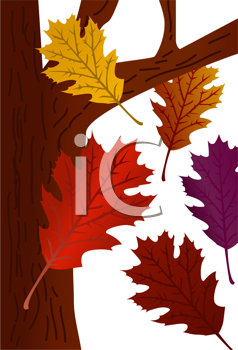 Royalty Free Clipart Image of a Oak Leaves Falling From a Tree