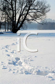 Royalty Free Photo of Footprints in Snow and a Tree in the Distance