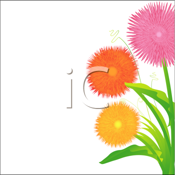 Royalty Free Clipart Image of Wildflowers
