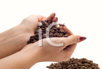 Royalty Free Photo of a Hand Holding Coffee Beans