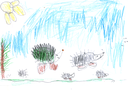 Kid's drawing - hedgehogs- made by child