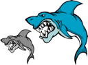 Danger shark with sharp tooth for mascot design in cartoon style