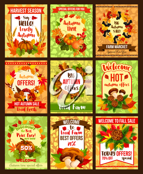 Autumn sale posters set for shop seasonal discount promo and hot price off special offer. Maple leaf, birch or oak acorn and pumpkin, rowan berry harvest, mushroom amanita or chanterelle vector design