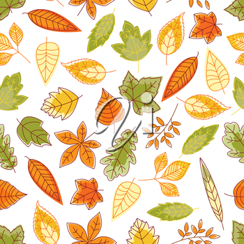 Leaves seamless background. Wallpaper of green, orange, red colorful foliage vector icons of oak, maple, birch, aspen, elm, poplar
