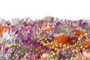Christmas and New Year decoration - colorful bright tinsel over white background