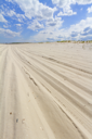 Beach view with car tire tracks in the sand, New Jersey shore