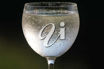 Royalty Free Photo of a Wineglass Filled With Sparkling Water