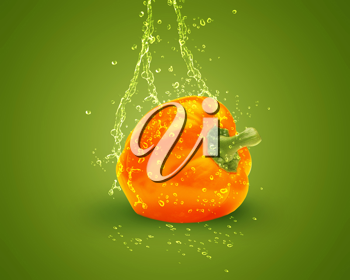 Royalty Free Photo of a Bell Pepper with Splashes of Water