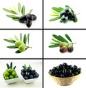 Healthy and organic food, Set of fresh black and green olive.