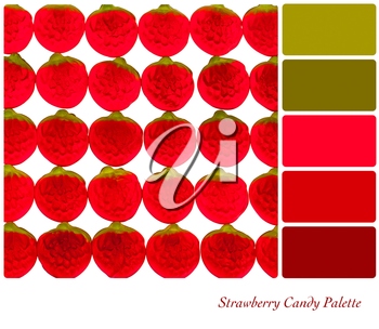 Strawberry candy palette with complimentary colour swatches