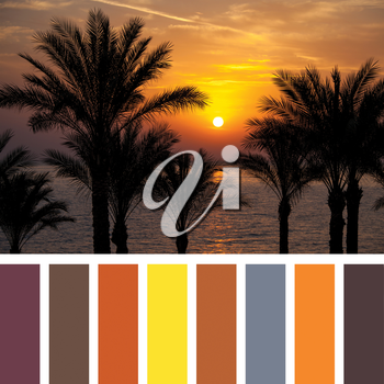 Sunrise over the Red with a colour palette of complimentary swatches