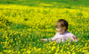 Royalty Free Photo of a Little Girl Picking Flowers