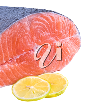 fresh raw salmon isolated on white background with space for text