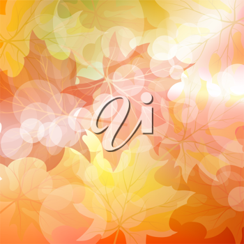 Autumn maples falling leaves background. Vector illustration with trancparency EPS10.