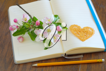 Spring blossom on blank open notebook with pencil love message symbol. Romantic letter diary. Lovely flowers passion concept. Empty romance lyrics book.