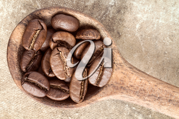 Spoon with coffee crop beans, top view
