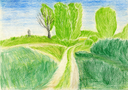 hand drawn illustration, raster graphics, artistic, illustration of landscape with rural scene, field and path