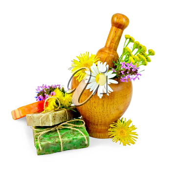 Three pieces of homemade soap, a wooden mortar with chamomile, tansy, elecampane isolated on white background