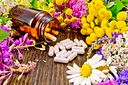 Capsules in brown jar open and on table, fresh flowers fireweed, tansy, chamomile, clover, yarrow, meadowsweet, mint leaves on background of wooden boards
