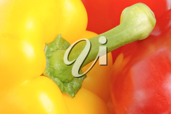 Royalty Free Photo of a Yellow and Red Pepper Closeup