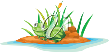 illustration of frog on island