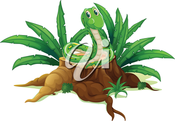 Illustration of a trunk with a green snake on a white background