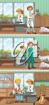 Vets working in the animal hospital illustration