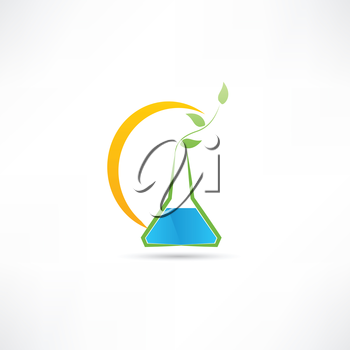 experience on plants icon