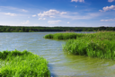 Royalty Free Photo of a Lake and Grassland