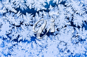 Royalty Free Photo of Frost on a Window