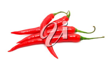 Red hot chili pepper isolated on white background