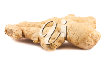 Royalty Free Photo of a Ginger Root