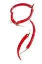 G letter made from chili, with clipping path