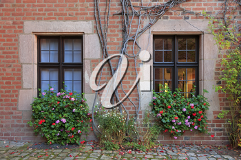 House windows with flowers, vines and brick wall in Nuremberg, Germany