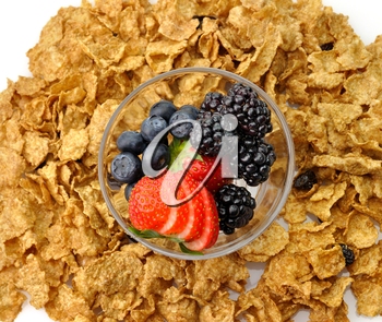 bran and raisin cereal with fruits and berries