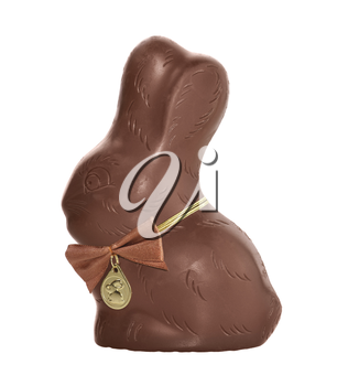 Chocolate Bunny Isolated On White Background