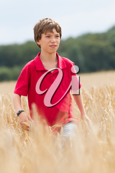 young child in a wheat field