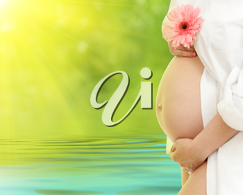 Royalty Free Photo of a Pregnant Woman Outdoors