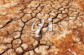 Royalty Free Photo of a Drought