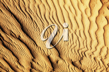 Royalty Free Photo of a Sand Dune Texture