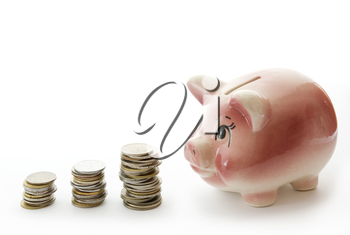 Pink piggy bank  isolated on white background with coins