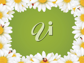 Royalty Free Clipart Image of a Floral Frame